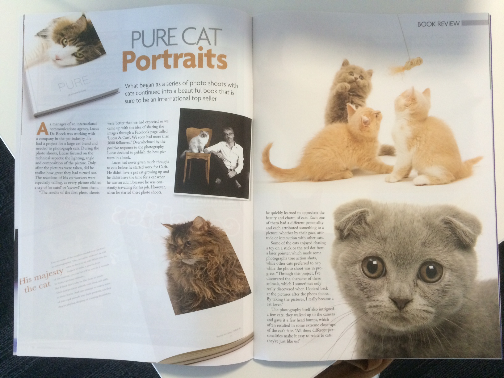 Article in Cat World magazine